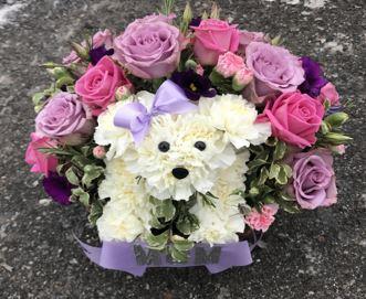 Dog Flower Memorial